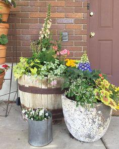 Instagram Backyard Patio, Backyard Ideas, Planter Pots, Canning, Building, Instagram Posts, Flowers, Plants, It's Amazing