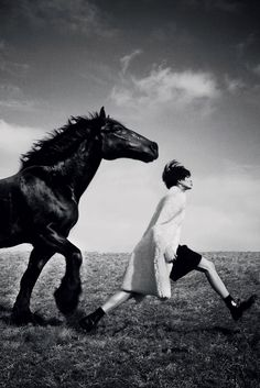 Horses are the symbol of strength and elegance combined.
