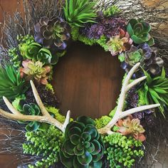 Faux succulent wreath embellished with antlers and moss...made with all things Hobby Lobby