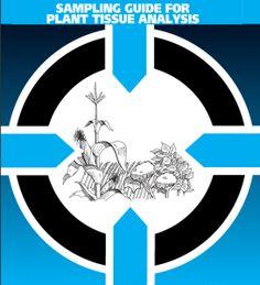 Plant Tissue Testing in June