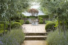 Levels soft textures of lavender willow boxwood balls and sharp hedge. Boxwood Landscaping, Modern Landscaping, Garden Landscape Design, Small Garden Design, Landscape Architecture, Small Gardens, Outdoor Gardens, Courtyard Gardens, Beddinge