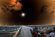 https://flic.kr/p/CydnTA | towards the galaxy | বেলা শেষের গান .................................।।  a surrealistic evening ..........    Copyright :Abdul Malek Babul FBPS . Cell:( +880) 01715298747  &  01837805350 E mail : babul.photopassion@gmail.com   bimboo.babul@yahoo.com www.flickr.com/photos/55321771@N08