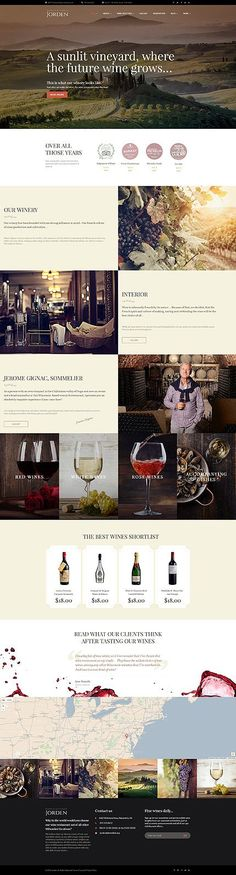 Template 51090 - Photographer CV Responsive WordPress Theme - resume web template