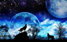 cool purple wolves | snow wolf howling to the wind cool wolf howling wallpapers abstract ...