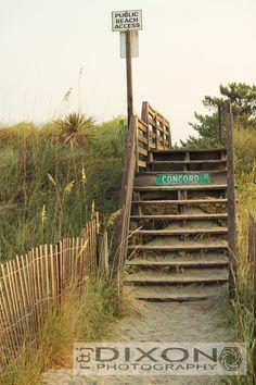 """""""The Path to Paradise"""" @ Ocean Isle Beach, NC"""