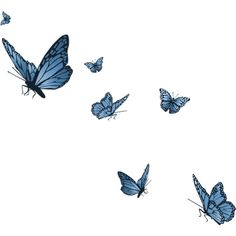 Butterflies ❤ liked on Polyvore featuring butterflies, animals, fillers, backgrounds and effects