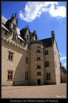 Château deMontsoreau( by HimalAnda) Maine-et-Loire,  Pays de la Loire,France.