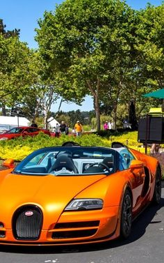 ♂ Luxury #car #vehicle #wheels orange Bugatti Veyron#3 most expensive car ! FREE 800$ A DAY METHOD energy-millionaires.com