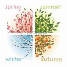 Four seasons color analysis winter spring summer fall - kleurenanalyse - Trees Top View, Tree Illustration, Watercolor Trees, Watercolor Paintings, Season Colors, Four Seasons, Graphic Design Art, Textured Background, Vector Free