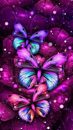 Butterflies wallpaper by - cc - Free on ZEDGE™ Butterfly Wallpaper Iphone, Purple Wallpaper, Glitter Wallpaper, Cute Wallpaper Backgrounds, Pretty Wallpapers, Love Wallpaper, Cellphone Wallpaper, Galaxy Wallpaper, Nature Wallpaper