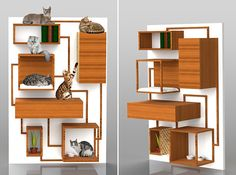 Pet furniture :) Multifunction Cat Climbing Wall Concept from Spase Janevski