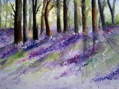 Bluebell Wood.Yvonne Harry