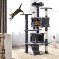 "Archie & Oscar™ 11"" Gabby Cat Perch & Reviews   Wayfair Cat Tree Condo, Cat Condo, Wood Dog House, Litter Box Enclosure, Cat Perch, Sisal Rope, Rabbit Hutches, Outdoor Cats, Fashion Designer"