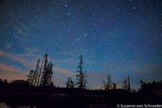 Night Photography Starry Night Big Dipper by SoulCenteredPhotoart