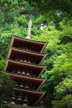 The five-storied pagoda of Murō-ji #japan  #nara