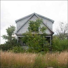 feral house - Detroit