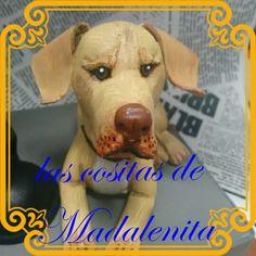 Ian Somerhalder mascota