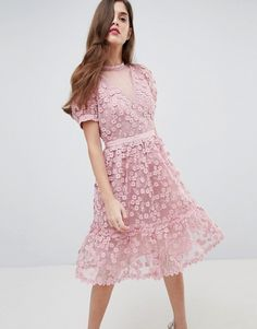 5b2d4335a67 French Connection Lace Applique Dress with Mesh Panelling