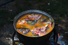 Ce pește este mai bun - ce pește are cele mai puține oase Pork, Food And Drink, Beef, Natural, Kale Stir Fry, Meat, Pork Chops, Nature, Steak
