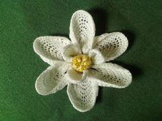 Free Pattern: Magnolia Bloom.  εїзCQ #crochet #spring #crochetflowers   http://www.pinterest.com/CoronaQueen/crochet-leaves-and-flowers-corona/