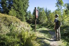 Follow waymarked trails