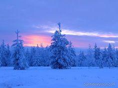 El momento azul en un bosque en Rovaniemi en la Laponia finlandesa