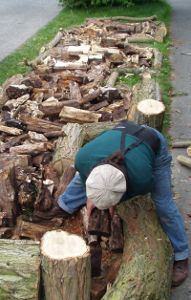 Hugelkultur is making raised garden beds filled with rotten wood.