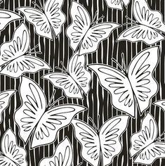metamorfose | diálogos em preto & branco