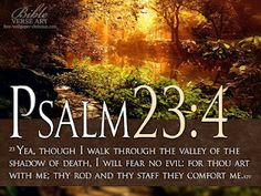 Yea, though I walk through the valley of the shadow of death, I will fear no evil for Thou are with me; Thy rod and Thy staff they comfort me...Psalm 23:4