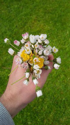 #blumen #gänseblümchen #strauß #frühling #nice