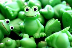 frogs pictures | ... Biggest Loser; Frogs, Birds, Pigs and Zombies on the iPad; TV Rewind