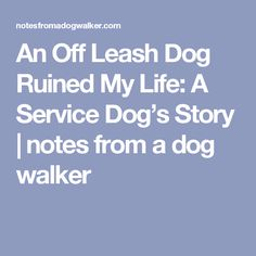 An Off Leash Dog Ruined My Life: A Service Dog's Story   notes from a dog walker