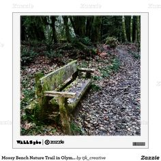 Mossy Bench Nature Trail in Olympic National Park Wall Decal