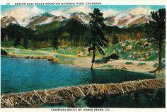Beaver Dam, Rocky Mountain National Park, Colorado (Vintage Postcard) | Flickr - Photo Sharing!