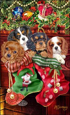 Cavalier King Charles Christmas cards are 8 x 5 and come in packages of 12 cards. One design per package. All designs include envelopes, your personal message, and choice of greeting. Christmas Scenes, Noel Christmas, Christmas Animals, Vintage Christmas Cards, Christmas Pictures, Christmas Crafts, Xmas, Illustration Noel, Christmas Illustration