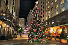 Christmas New Orleans style is like any other celebration. There are decorations and celebrations spread throughout the city. Come by and see the Miracle on Fulton Street.