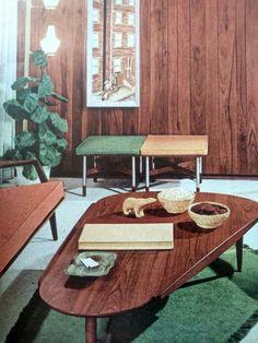 1960s mid century living room