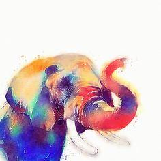 "The Majestic - Watercolor Elephant"" by Jacqueline Maldonado ..."