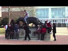 University of South Alabama Harlem Shake