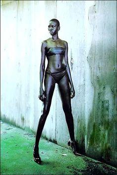 Alek Wek, fashion model.