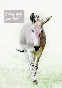 An Abyssinian Wild Ass walking towards the viewer, and text 'Every Step You Take' Every Step You Take, Abyssinian, Card Designs, Donkey, Giraffe, Greeting Cards, Walking, Horses, Prints