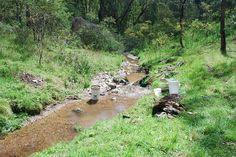 Gold prospecting    http://www.findgoldprospecting.com/