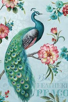 Great Big Canvas 'Blue Feathered Peacock I' by Lisa Audit Graphic Art Print Format: White Frame, Size: H x W x D Canvas Wall Art, Art Prints, Art Painting, Poster Prints, Great Big Canvas, Peacock Wall Art, Painting, Art, Bird Art