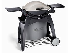 Webber Q BBQ Stationary Cart- or the portable one?