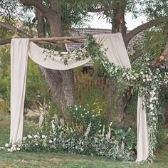 Wedding tree backdrop outdoor ceremony - A wedding signifies the introduction of the very best aspect of life. An outdoor wedding provides you with a. Wedding Altars, Wedding Ceremony Decorations, Tree Wedding, Wedding Themes, Wedding Events, Wedding Ceremonies, Wedding Ideas, Wedding White, Church Wedding