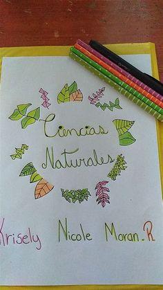 Lightroom Gratis, School Notebooks, Bullet Journal Ideas Pages, Mandala Art, Cute Drawings, Diy For Kids, Paper Crafts, Notes, Lettering