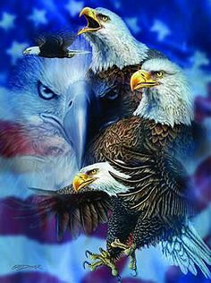 Patriotic Eagles jigsaw puzzle by SunsOut