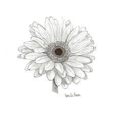 Gerber Daisy graphics - Google Search