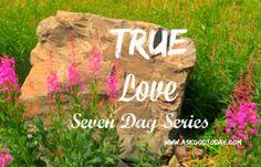 Today's post by Trina Matous in the TrueLove series at Ask God Today Ministries reminds of the Father's desire for us to spend time with him!
