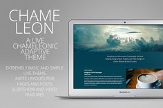 Chameleon - Adaptive Wordpress Theme by creativebythesea on @creativemarket